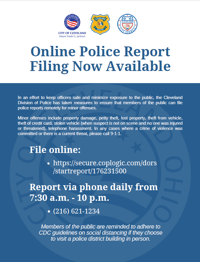Online and Phone Police Reports